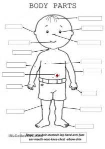 body parts edu activity ideas pinterest bodies