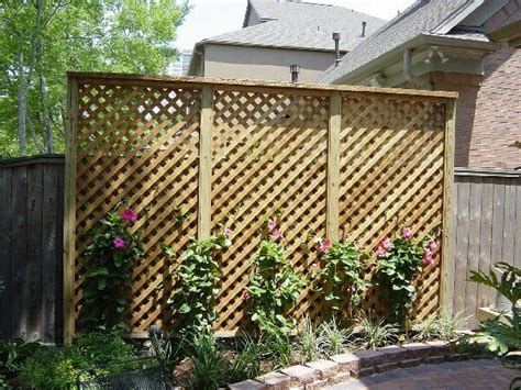 Privacy Trellis privacy trellis backyard privacy