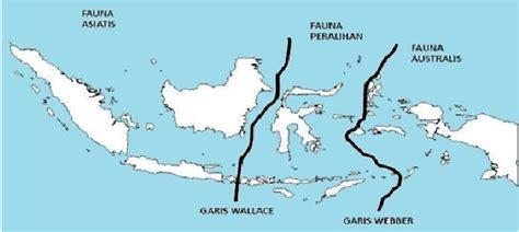 Di Indonesia persebaran fauna di indonesia