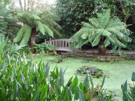Trengwainton Garden   Penzance   Cornwall Guide