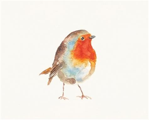 17 best images about robin red on pinterest watercolors