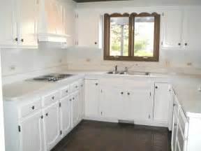 Cabinet Paint White by Painting Kitchen Cabinets White For Cleanliness My