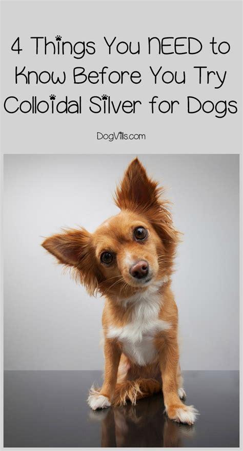 colloidal silver for dogs colloidal silver for dogs a dangerous fad dogvills