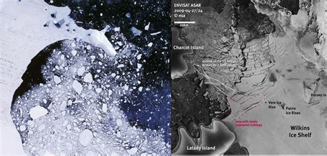 Antarctic Shelf Collapse warming in the antarctic a factor in shelf collapses