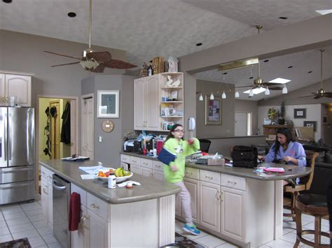 before and after kitchens by diane rockford il park il