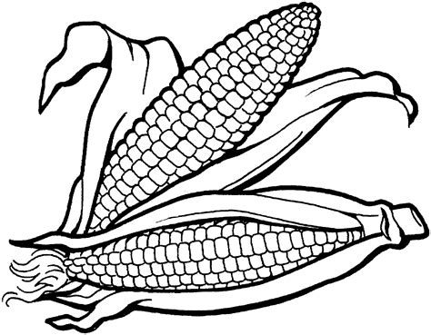 Corn Coloring Pages For Thanksgiving | thanksgiving coloring pages corn holidays coloring pages