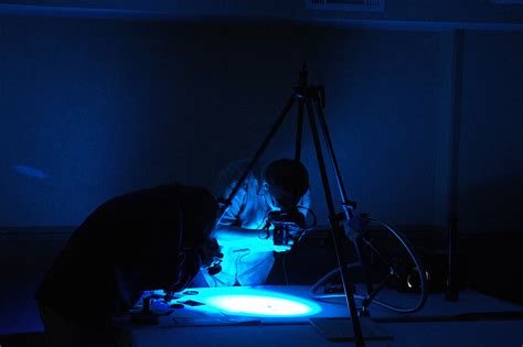 forensic photography course the best wallpaper arts and