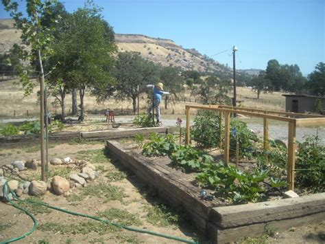 Oklahoma Gardening Forum by Railroad Ties Ok For A Raised Bed Garden Page 3