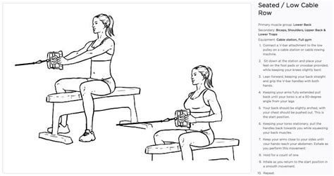 seated cable row seated cable row exercise for middle back