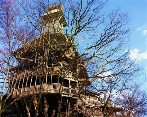 tree houses for sale building a livable tree house for sale best house design livable tree houses for