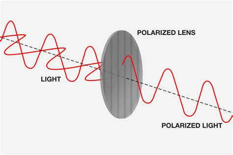 what is polarized light image gallery how polarized lenses work