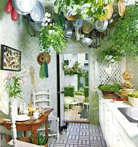 plants in kitchen 5 incredibly cool outdoor dream kitchens bath pro of
