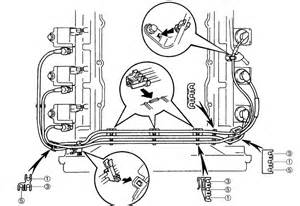 toyota tacoma timing chain replacement toyota free engine image for user manual