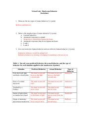 mealworm behavior worksheet geohagan 1 virtual lab