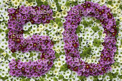 foto fiori bianchi viola e fiori bianchi in una forma di numero 50