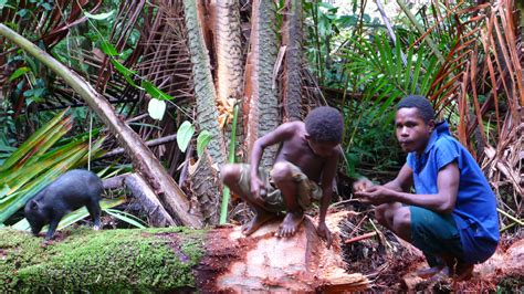 papua new guinea papua cannibalism www pixshark images galleries