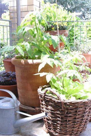 Garten Mieten Urdorf by Gardening Ein Erfahrungsbericht