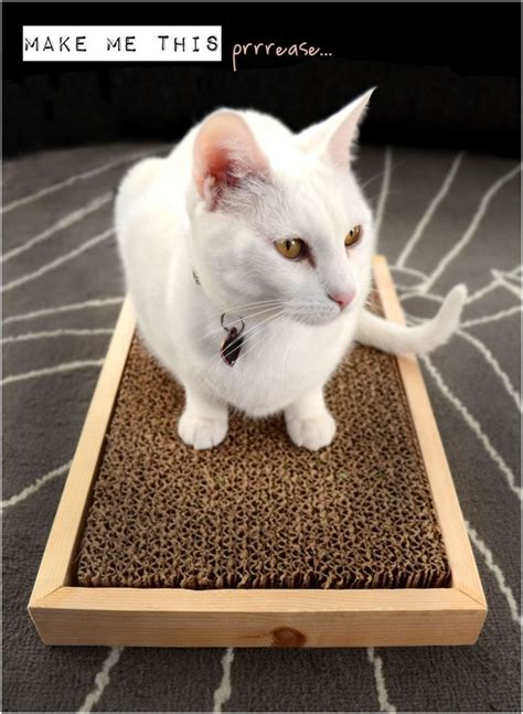Jo In Scratching Pad top 10 diy cat scratching posts and pads diy home