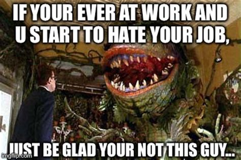 Feed Me Seymour Meme - little shop of horrors imgflip