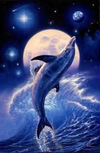 beau fond d 233 cran dauphin