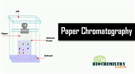 How To Make Chromatography Paper - what is paper chromatography principle and procedure