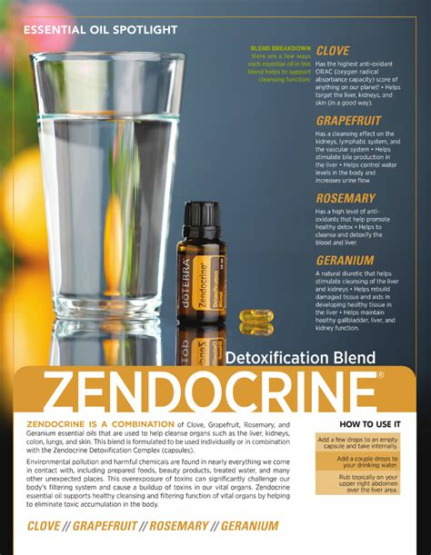 Essential Oils For Detoxing The by Doterra Zendocrine Essential Blend So Many Benefits
