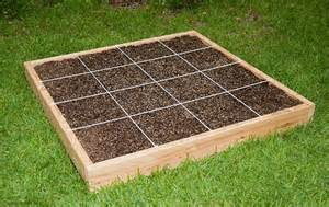 How to start a garden as a part of your house kris allen daily