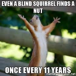 every blind squirrel finds a nut even a blind squirrel finds a nut once every 11 years