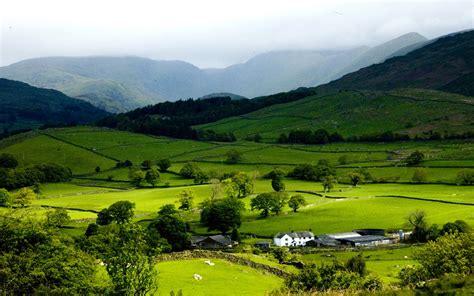 wallpaper green scenery grassland green scenery wallpaper