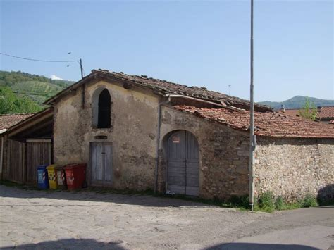 in vendita pontassieve montebonello pontassieve in vendita e in affitto