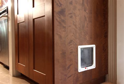 Cat Doors For Windows Decor Superb Litter Box Decorating Ideas For Transitional Dallas