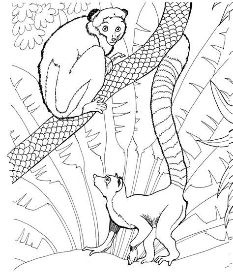 Free Lemur Coloring Pages Lemur Coloring Page