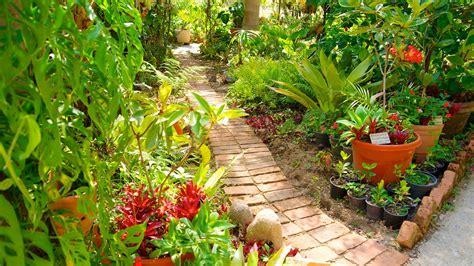Puerto Vallarta Botanical Gardens In Puerto Vallarta Vallarta Botanical Gardens