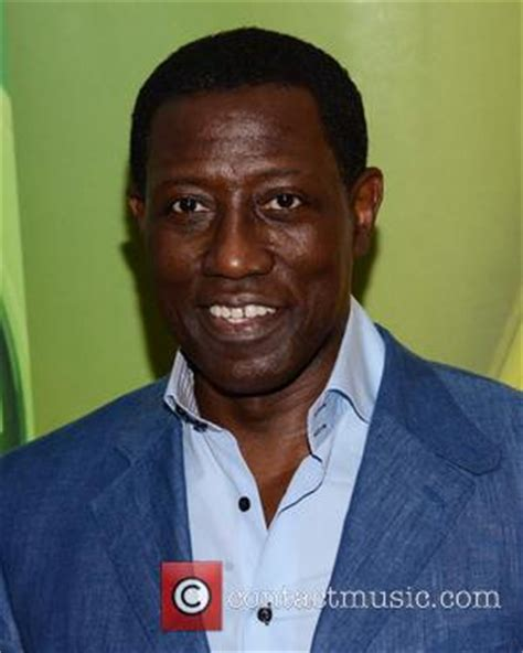 Wesley Snipes Reaches Settlement On Tax Charges by News Archive 10th July 2015 Contactmusic