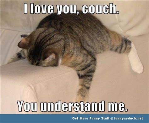 Cute I Love You Meme - cute animal love memes image memes at relatably com