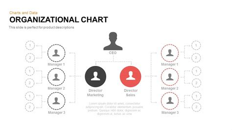 Organizational Chart Powerpoint Template And Keynote Slide Slidebazaar Org Chart Template For Keynote