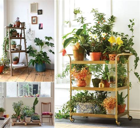 indoor planter ideas 13 fresh ideas for indoor planter stands