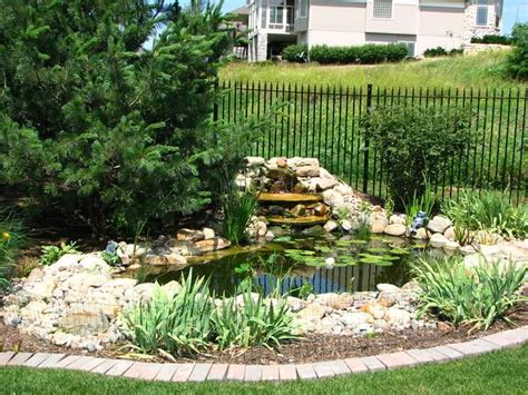 turtle ponds for backyard 14 best images about backyard turtle pond on pinterest