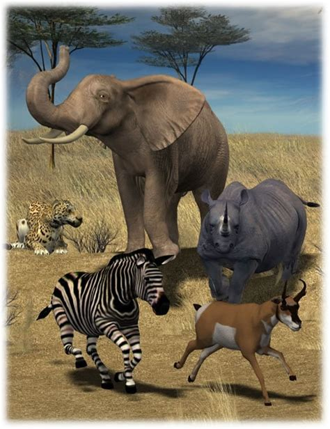 Safari Animals Poses 3d Models And 3d Software By Daz 3d