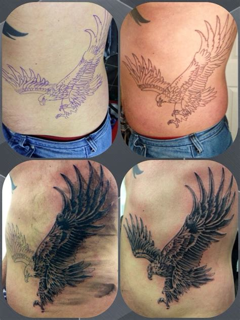 stages of a tattoo stages of eagle on ribs design of tattoosdesign