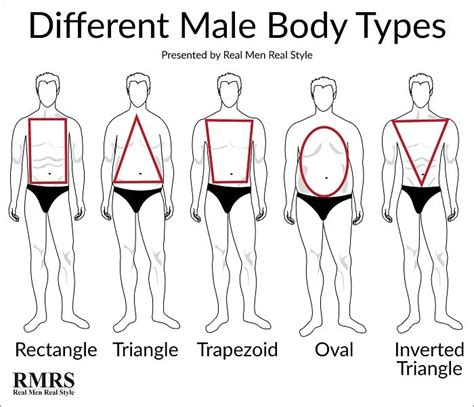 body types and shapes how to develop your personal style discover the best