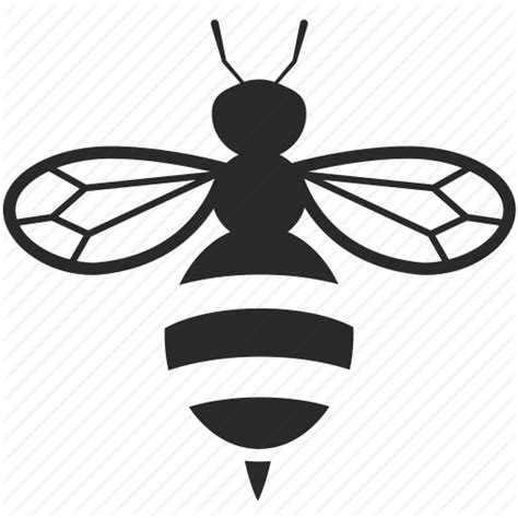 honey bee icon bee bug honey imago insect wasp icon icon search engine