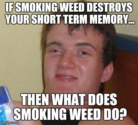 Memes About Smoking Weed - i said it destroys your short term memory imgflip