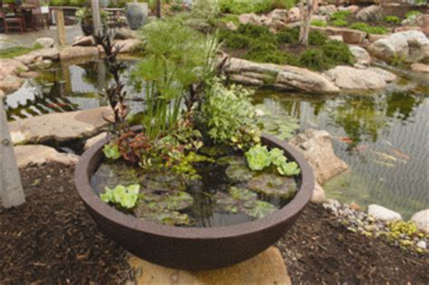 Aquascape Patio Pond by European Terra Cotta Fiberglass Composite Aquatic
