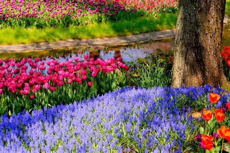 wallpaper abyss spring springtime in the park full hd wallpaper and background