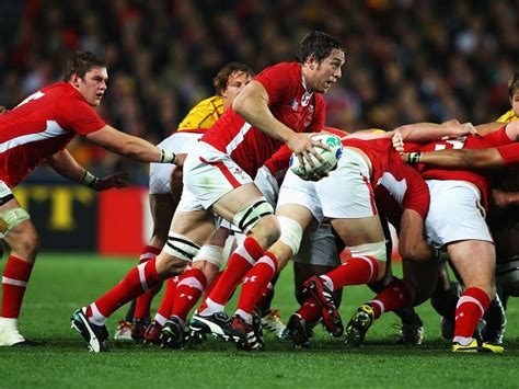rugby world cup  packages gullivers sports travel