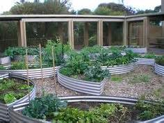 Corrugated Iron Vegetable Garden 1000 Images About Garden Beds Corrugated Iron On