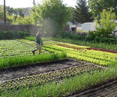 backyard farming for profit backyard farming for profit 2017 2018 best cars reviews