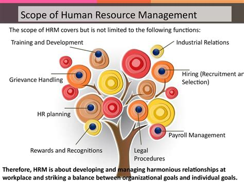 Scope Of Mba In Human Resource Management In Pakistan by Introduction To Human Resource Management презентация онлайн