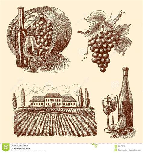 wine vector wine sketch decorative set stock vector illustration of